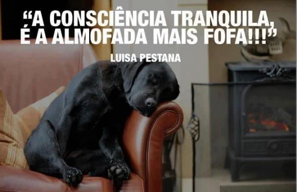 A consciência tranquila...