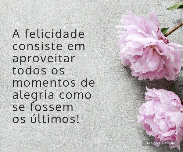 A felicidade consiste em...