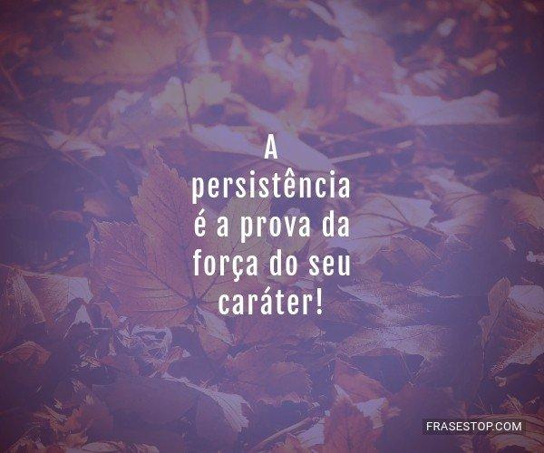 A persistência é a...