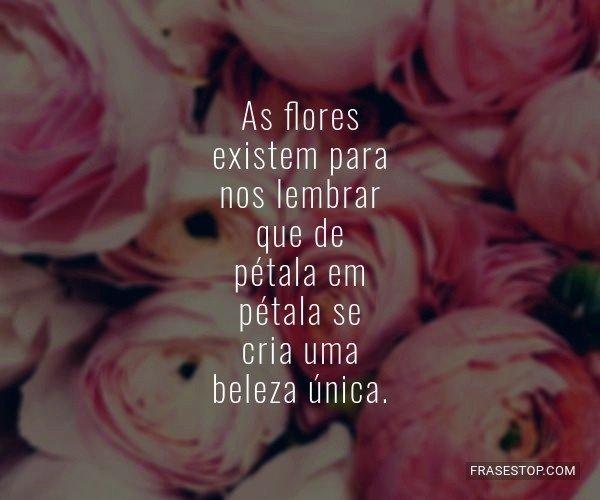 As flores existem para...