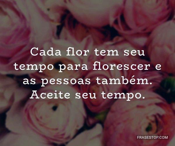 Cada flor tem seu tempo...