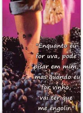 Enquanto eu for uva,...