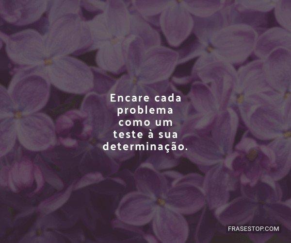 Encare cada problema como...