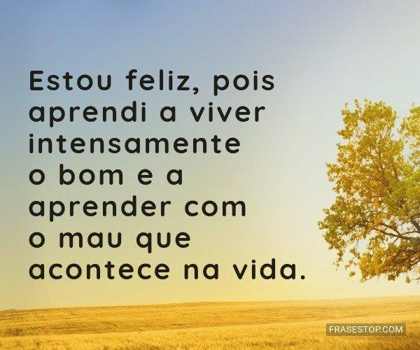 Estou feliz, pois aprendi...