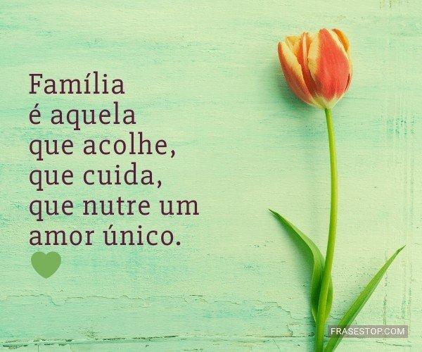 Família é aquela que...