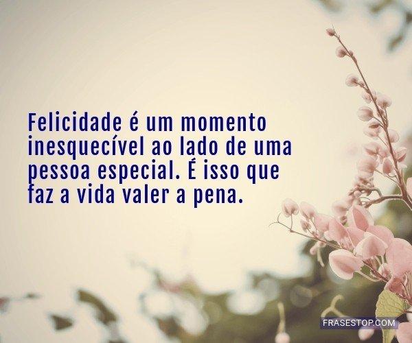 Felicidade é um momento...