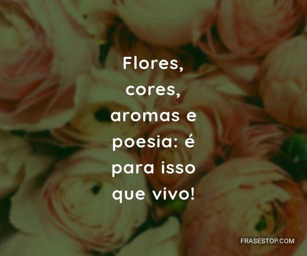 Flores, cores, aromas e...