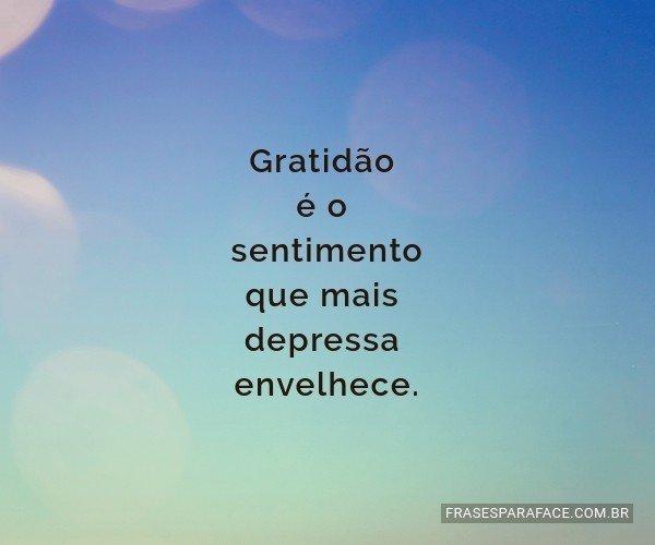 Gratidão é o sentimento...