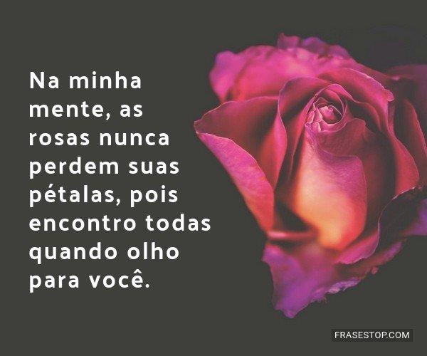 Na minha mente, as rosas...