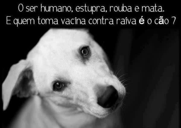O ser humano estupra,...