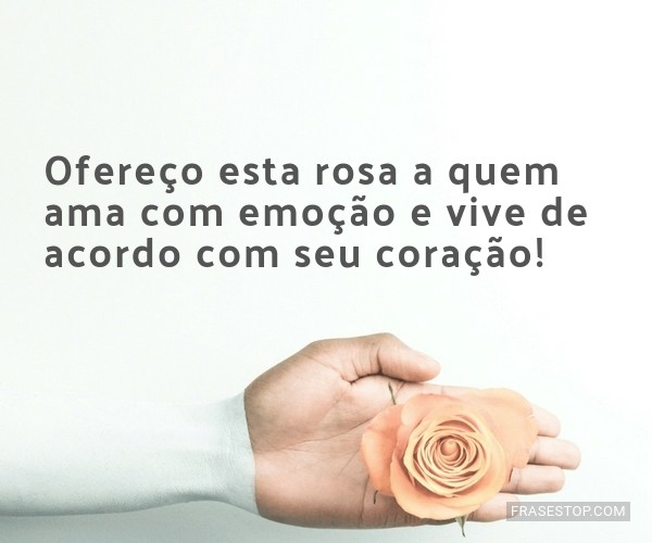 Ofereço esta rosa a quem...