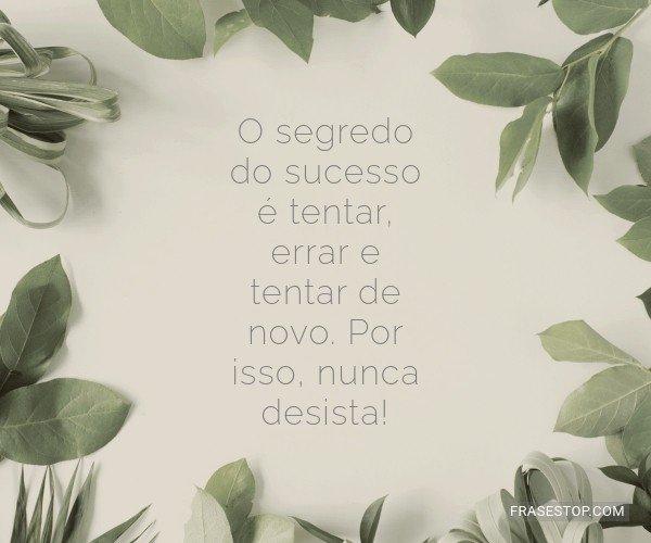 O segredo do sucesso é...