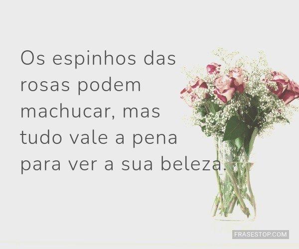 Os espinhos das rosas...