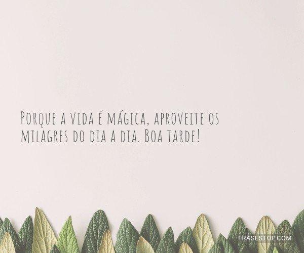 Porque a vida é mágica,...