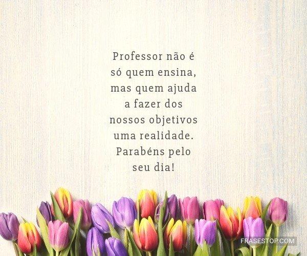 Professor não é só...