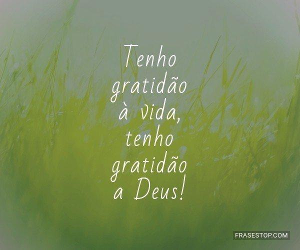 Tenho gratidão à vida,...