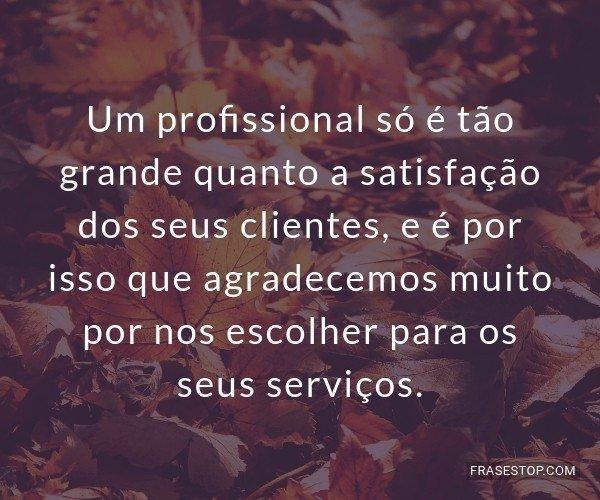 Um profissional só é...