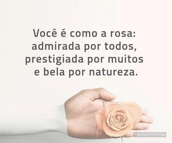Você é como a rosa:...